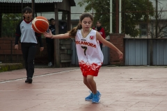 14 Dia Mundial Nacional del Minibasket 2019