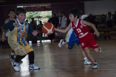 03-Minibasket-vs-San-Jose